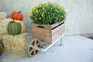 DIY Rustic Wheelbarrow Planter