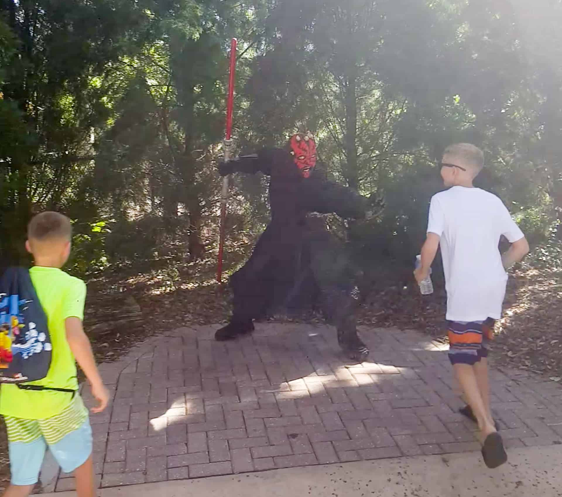 Legoland Florida Star Wars Darth Maul sculpture