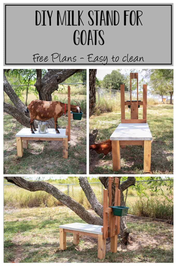 DIY Milk Stand for Goats - Build plans for an easy to clean milk stand for dairy goats